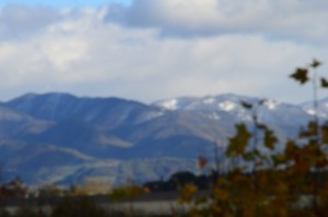 (FILEminimizer) LA PRIMA NEVE IN MUGELLO (3)